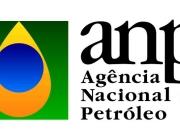 logo-anp-agencia-nacional-do-petroleo